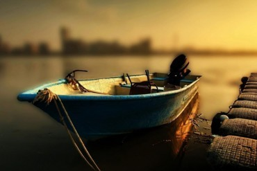Pescuitul la rapitori – Pasiune si stiinta